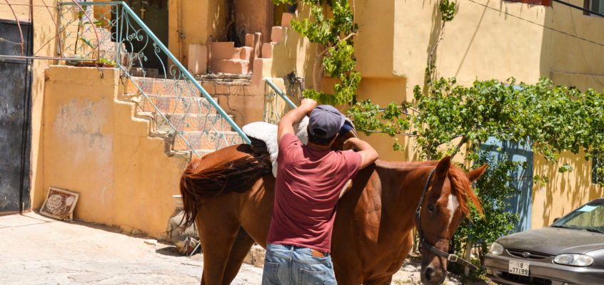 From the Big City to Horse Riding in Jordan